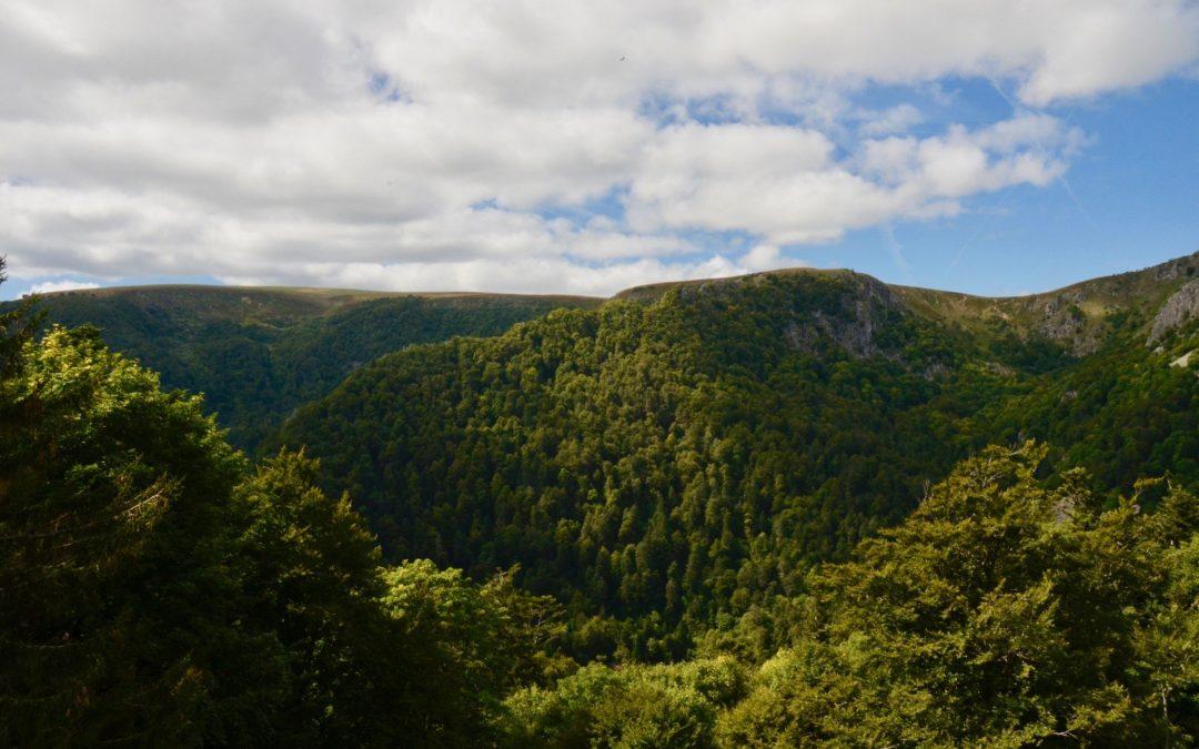 5 raisons pour lesquelles vous allez aimer vivre dans les Vosges